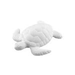 Schildkröte / 10 Euro / KiK10